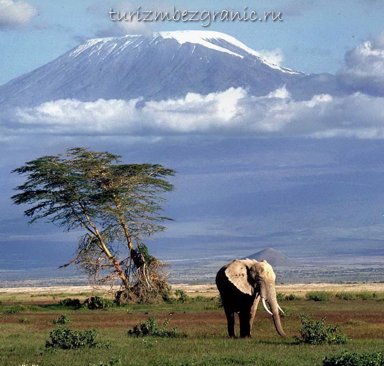 Килиманджаро, Танзания, Африка
