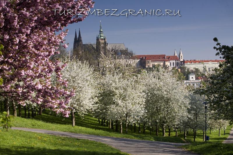 Сады Пражского Града весной