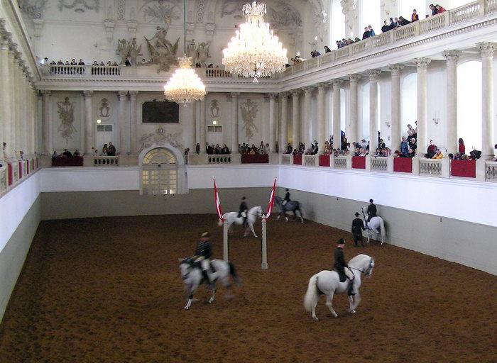 испанская школа верховой езды, Что посмотреть в Вене